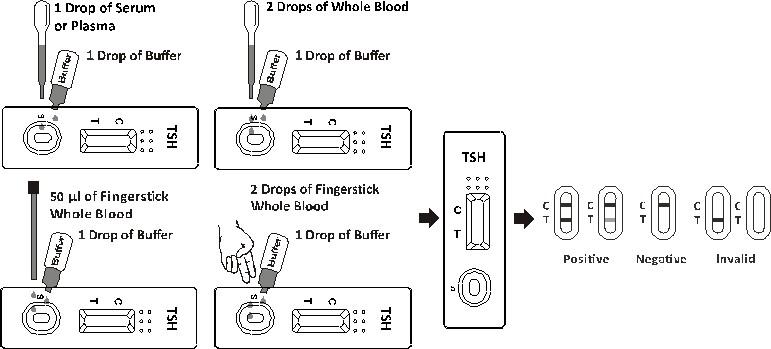 Tsh Rapid Test Cassette Biozek