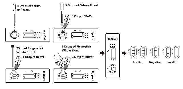 helicobacter pylori självtest